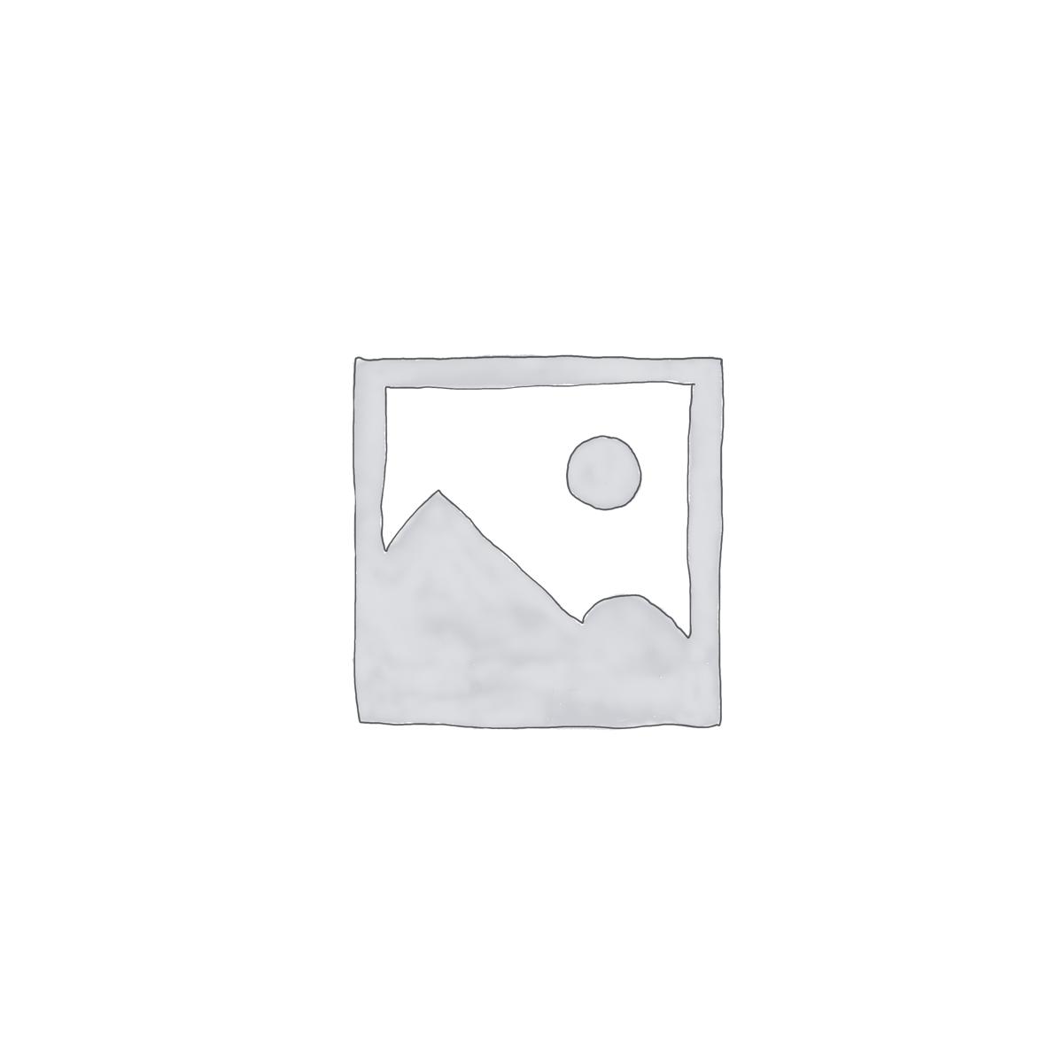 CHO THUÊ NHÀ TRONG HẺM ĐƯỜNG LẠC LONG QUÂN, TP.VŨNG TÀU